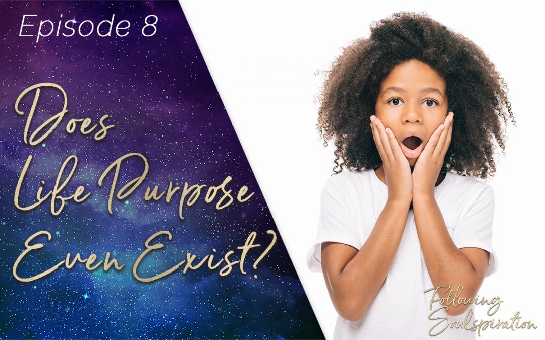 Episode 8 – Does Life Purpose Even Exist?