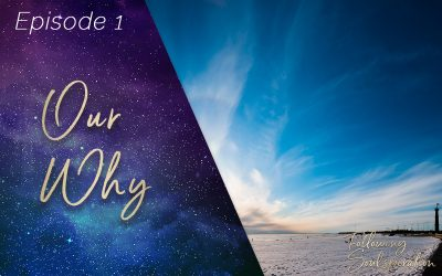 Episode 1 – Our Why… in Following Soulspiration
