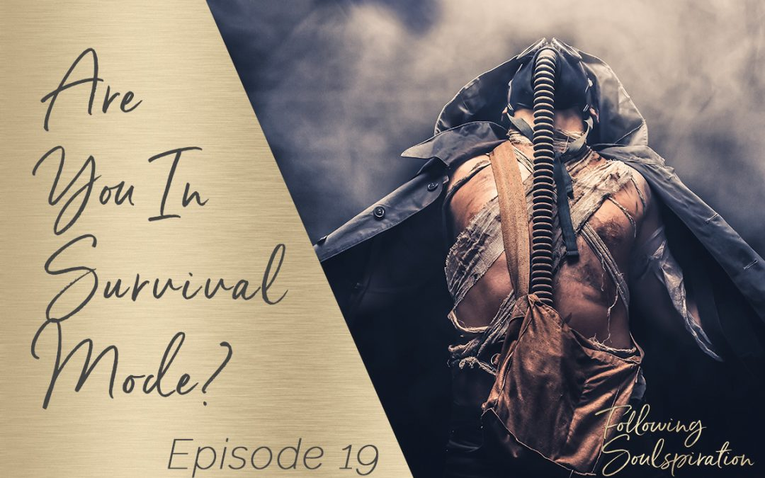 Episode 19 – Are you in Survival Mode?
