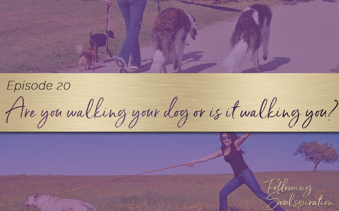 Episode 20 – Are you walking your dog or is it walking you?